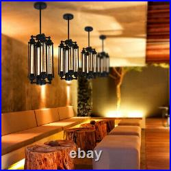 Industrial Vintage Metal Fixture Cage Pendant Light Hanging Ceiling Lamp Shade