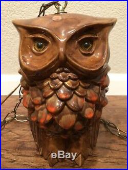 Rare Vintage and Good Looking Two Sided OWL Swag Hanging Lamp
